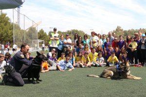 Sant Jordi 2015 - 027